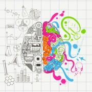 Sol Beyin/Sağ Beyin Miti