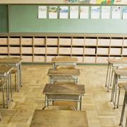 Türkiye'de ve Başka Ülkelerde Okul Terkleri ve Devamsızlık