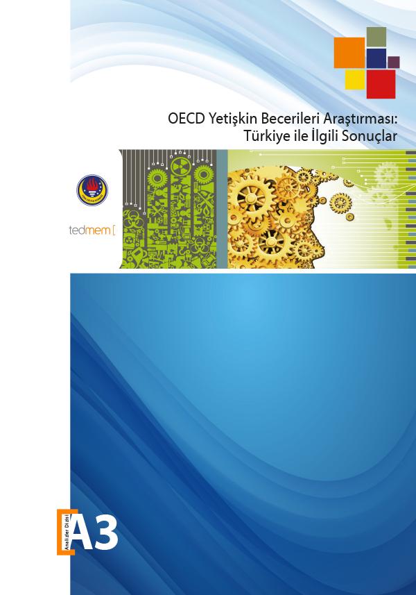 OECD Yetişkin Becerileri Araştırması: Türkiye ile İlgili Sonuçlar